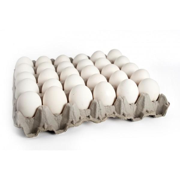Huevos Extra 15/30 unidades